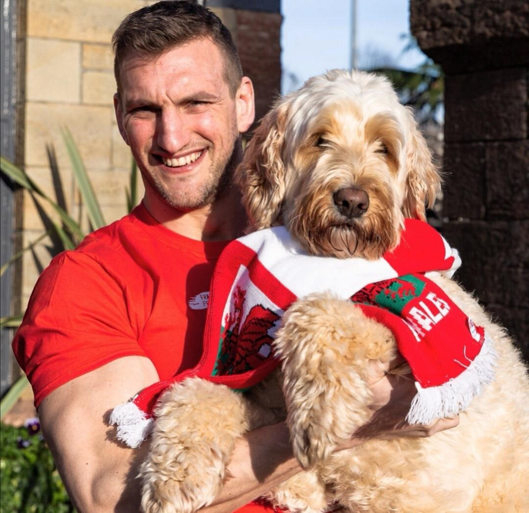 Rugby legend Sam Warburton set to judge virtual dog show in aid of NSPCC Cymru